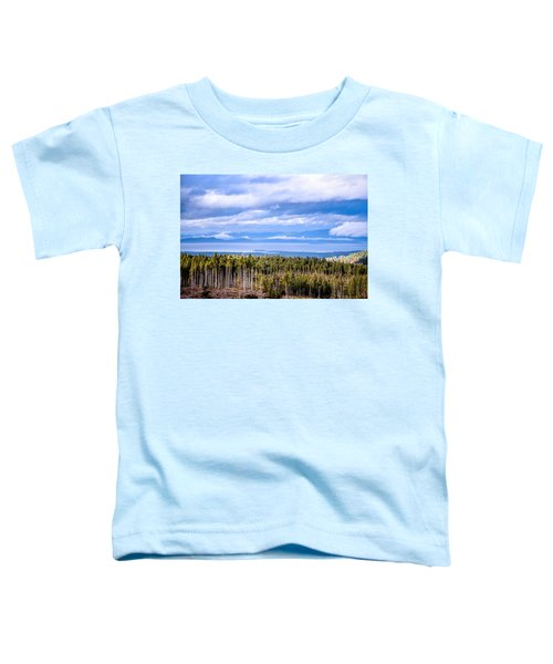 Johnstone Strait High Elevation View Toddler T-Shirt
