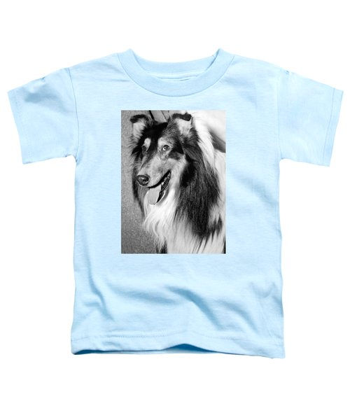 Best Of Breed Collie Toddler T-Shirt