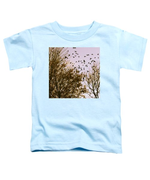 Birds Of A Feather Flock Together Toddler T-Shirt