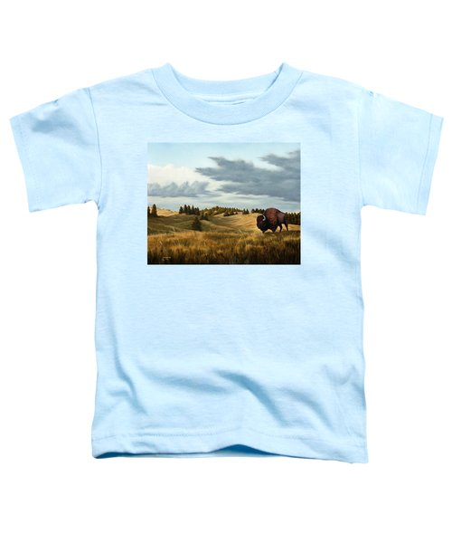 Bison  Wind Cave Park  South Dakota Toddler T-Shirt