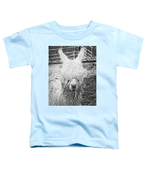 Black And White Alpaca Photograph Toddler T-Shirt by Keith Webber Jr