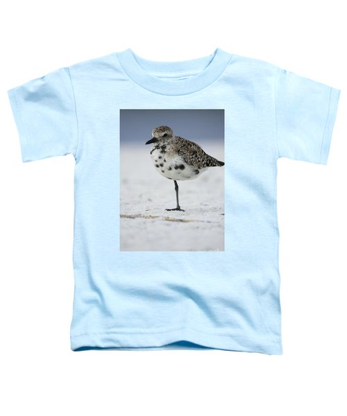 Black-bellied Plover Toddler T-Shirt