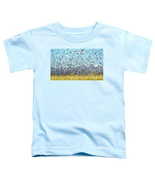 Blackbirds And Geese Toddler T-Shirt