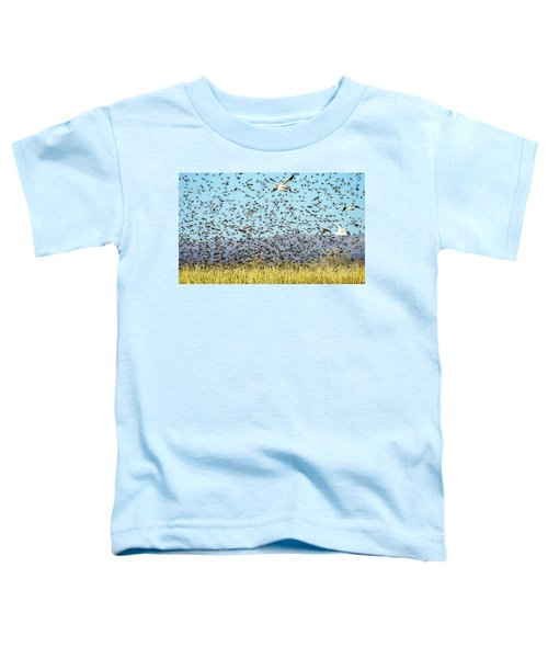 Blackbirds And Geese Toddler T-Shirt