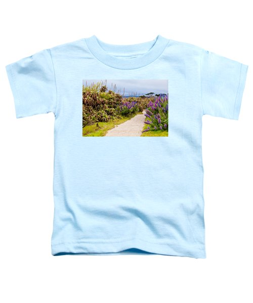 California Coastline Path Toddler T-Shirt