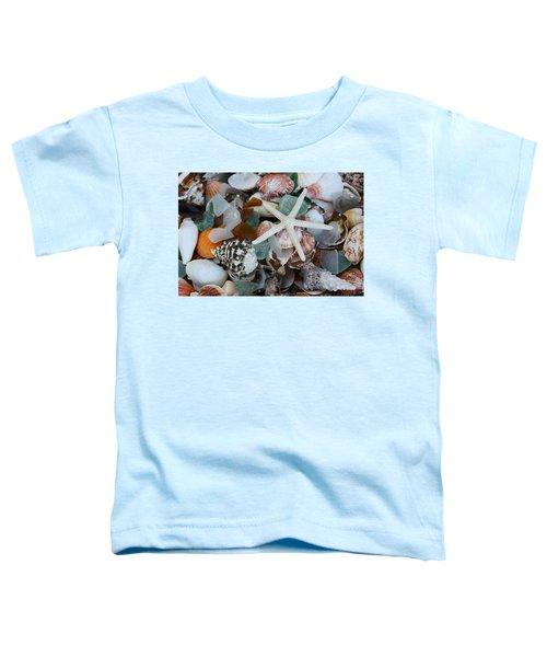 Caribbean Shells Toddler T-Shirt