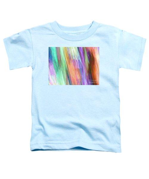 Celeritas 19 Toddler T-Shirt