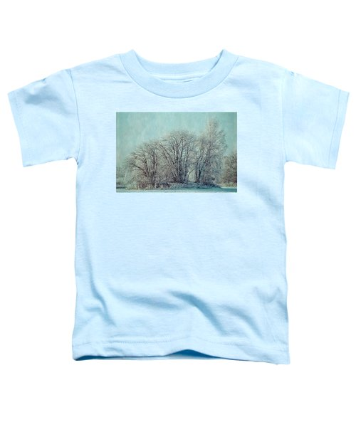 Cold Winter Day Toddler T-Shirt