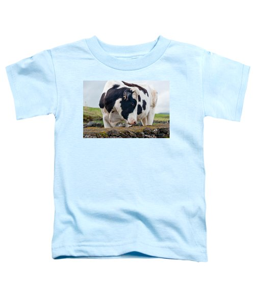 Cow With Head Turned Toddler T-Shirt