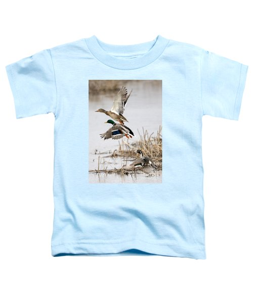 Crowded Flight Pattern Toddler T-Shirt