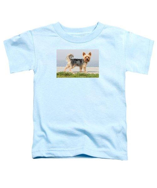 Cut Little Dog In The Sun Toddler T-Shirt