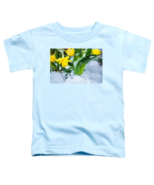 Daffodils In The Snow  Toddler T-Shirt