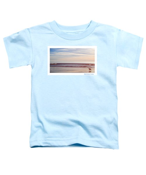 Dog On The Beach Toddler T-Shirt
