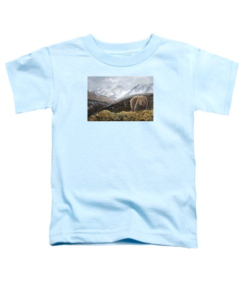 Driven To Rest Toddler T-Shirt