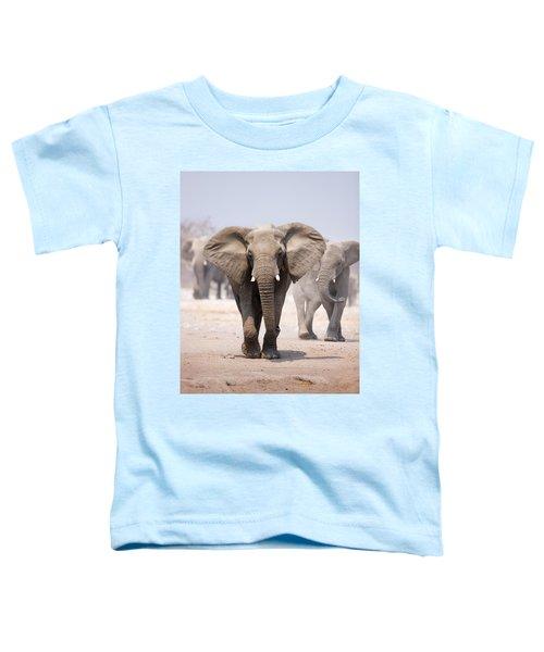 Elephant Bathing Toddler T-Shirt