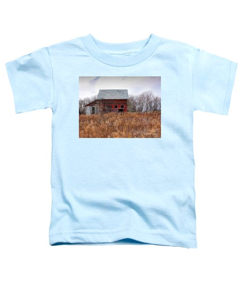 Field Of Dreams Toddler T-Shirt