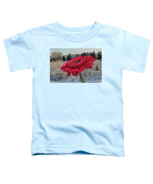 Gerbera Daisy In The Snow Toddler T-Shirt