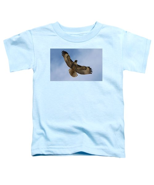 Hawk In Flight  Toddler T-Shirt