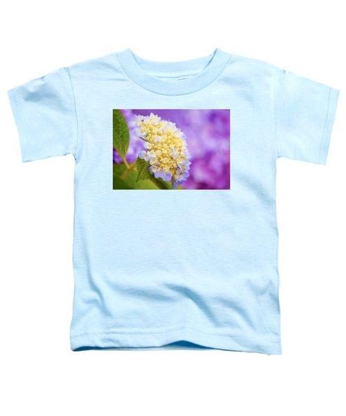 Hydrangea On Purple Toddler T-Shirt
