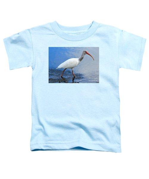 Ibis Visitor Toddler T-Shirt by Carol Groenen