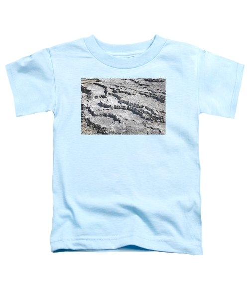 Mammoth Terraces Detail Toddler T-Shirt