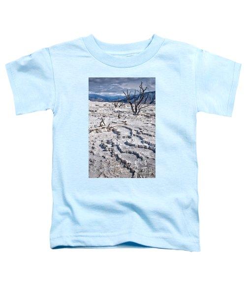 Mammoth Terraces Vertical Toddler T-Shirt