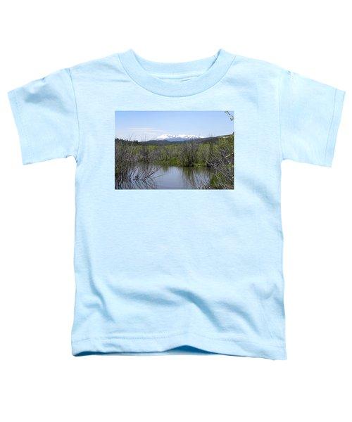 Lake Manitou Sp Woodland Park Co Toddler T-Shirt