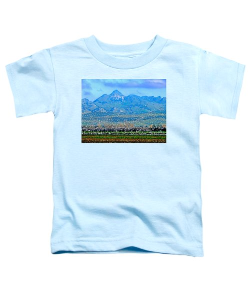 Migrating Birds Over Sutter Wilflife Refuge Toddler T-Shirt
