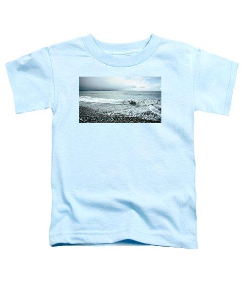 Moody Shoreline French Beach Toddler T-Shirt