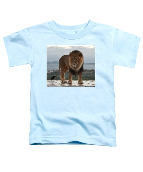 Out Of Africa Lion 3 Toddler T-Shirt