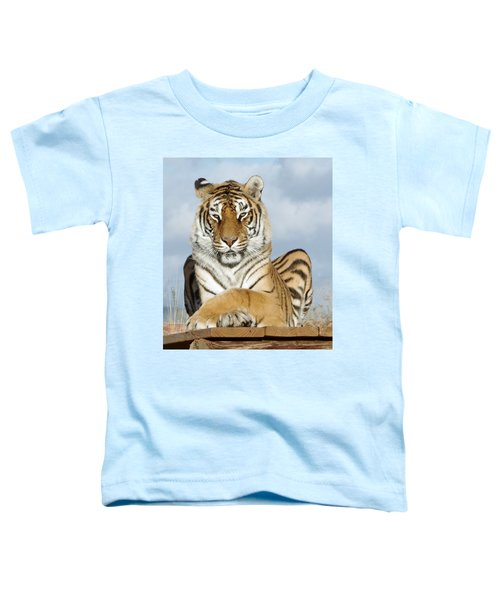 Out Of Africa Tiger 3 Toddler T-Shirt