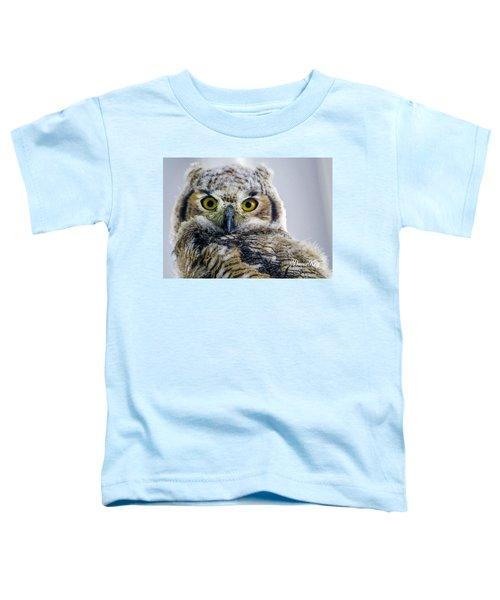 Owlet Close-up Toddler T-Shirt