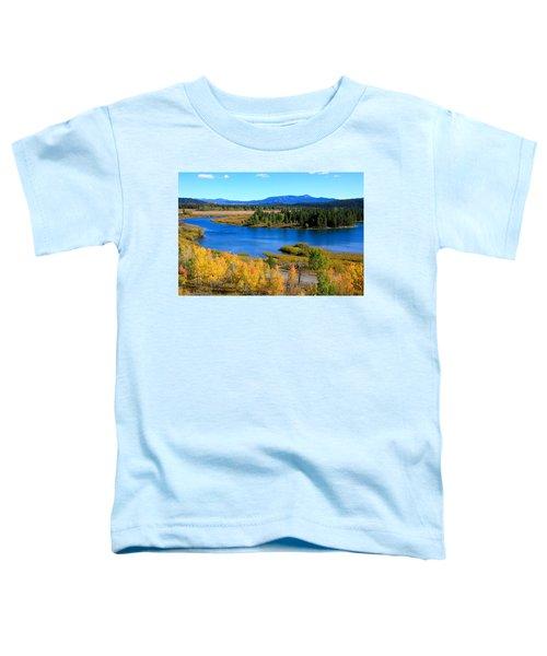 Oxbow Bend, Grand Teton National Park Toddler T-Shirt