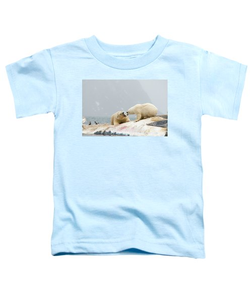 Pair Of Unreleated Polar Bear, Ursus Toddler T-Shirt