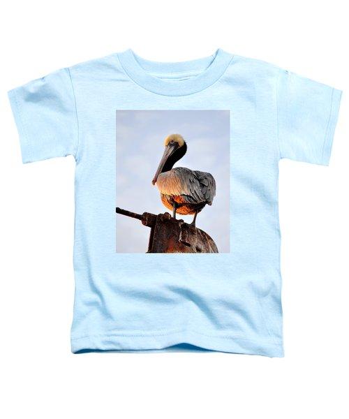 Pelican Looking Back Toddler T-Shirt
