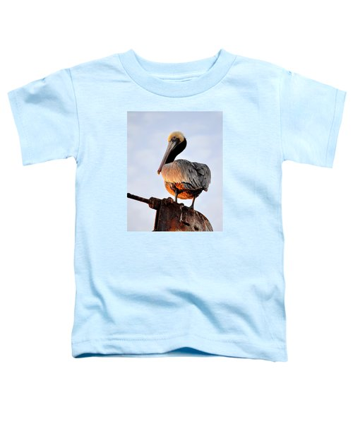 Pelican Looking Back Toddler T-Shirt
