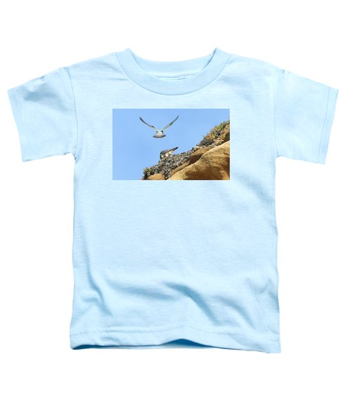 Peregrine Falcons - 2 Toddler T-Shirt