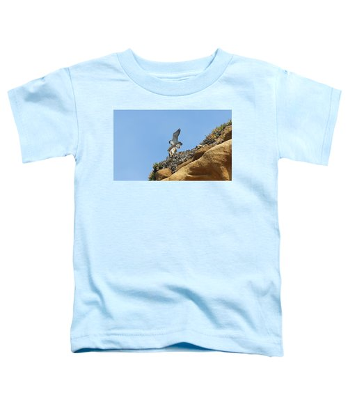 Peregrine Falcons - 3 Toddler T-Shirt