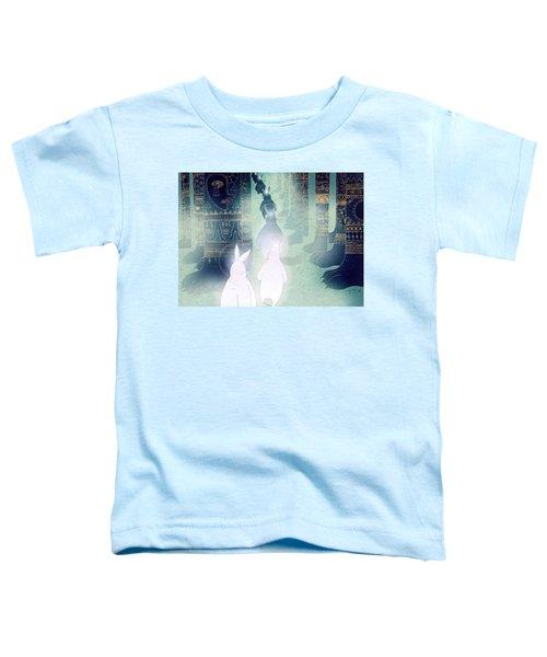 Pilgrimage Toddler T-Shirt