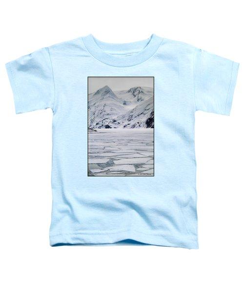 Portage Lake Toddler T-Shirt