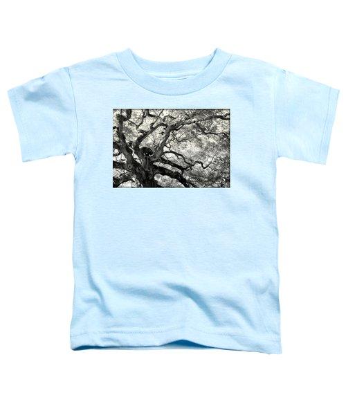 Reaching For Heaven Toddler T-Shirt