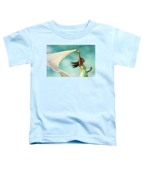 Sailing A Favorable Wind Toddler T-Shirt