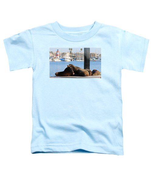 Sailing Dreams  Toddler T-Shirt