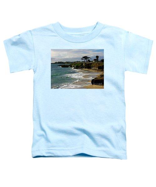 Santa Cruz Beach Toddler T-Shirt