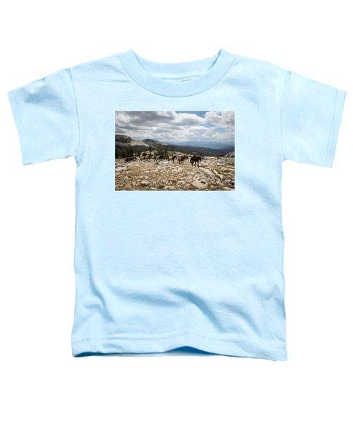 Sierra Trail Toddler T-Shirt