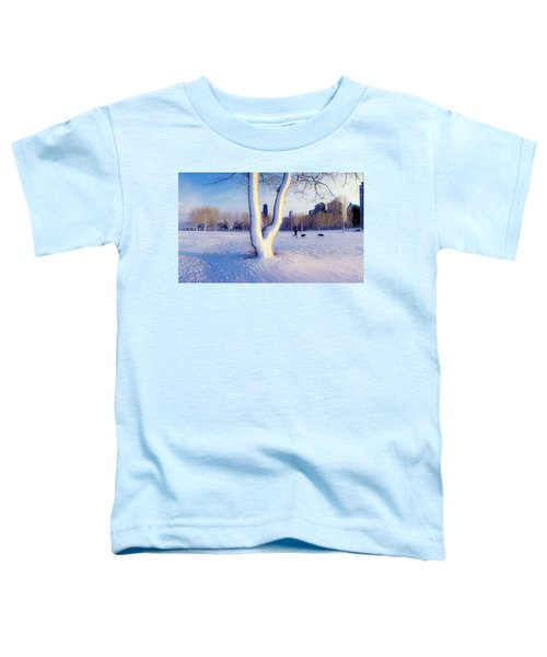 Snow Covered Lakefront Park In Winter Toddler T-Shirt