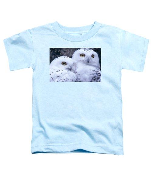 Snowy Owls Toddler T-Shirt