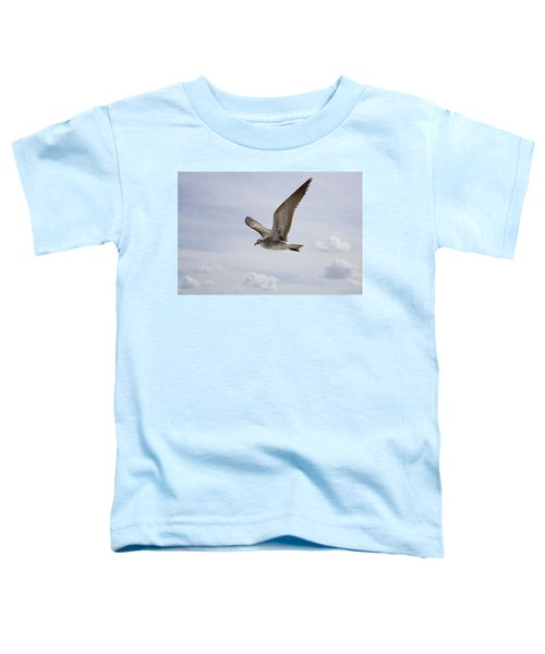 Soaring Gull Toddler T-Shirt