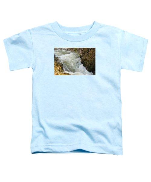 Spring Rush Toddler T-Shirt