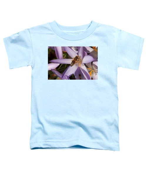 Spring's Welcome Toddler T-Shirt